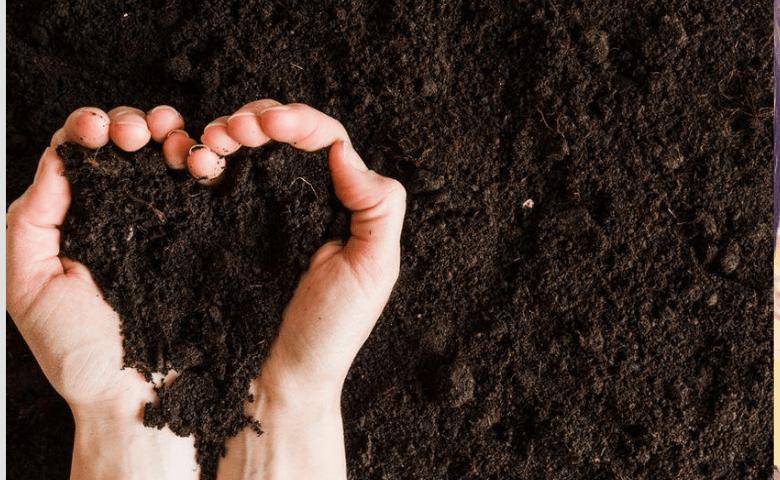 Compostaje: de la tierra a la tierra