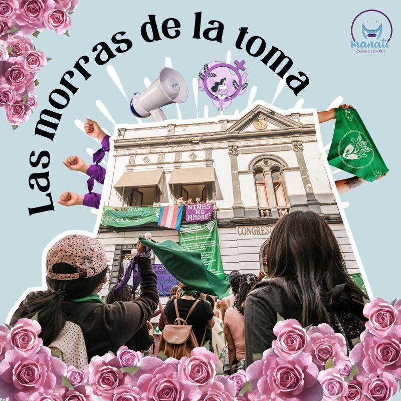 El 24 de noviembre de este año, alrededor de una docena de mujeres poblanas jóvenes hicieron historia: tomaron el Congreso del estado para exigir a los diputados locales que se estudiara a fondo la despenalización del aborto.