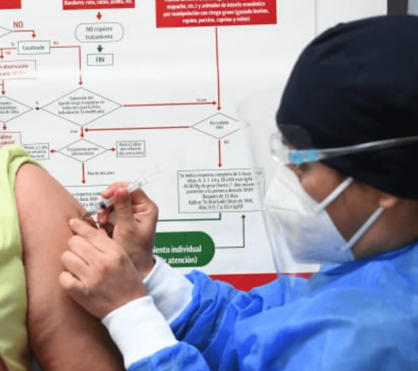 Presentarán iniciativa para castigar venta de vacunas falsas contra covid