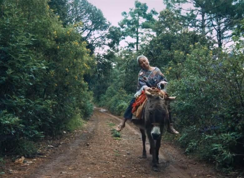 Conchita estudió Filosofía, Antropología y Derecho. Encabezó la defensa de un grupo de indígenas criminalizados entre los años setentas y los años noventas. Fotograma del documental La abogada del pueblo.