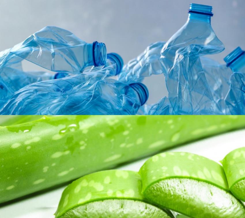 Estudiantes BUAP buscan crear material biodegradable para sustituir el plástico