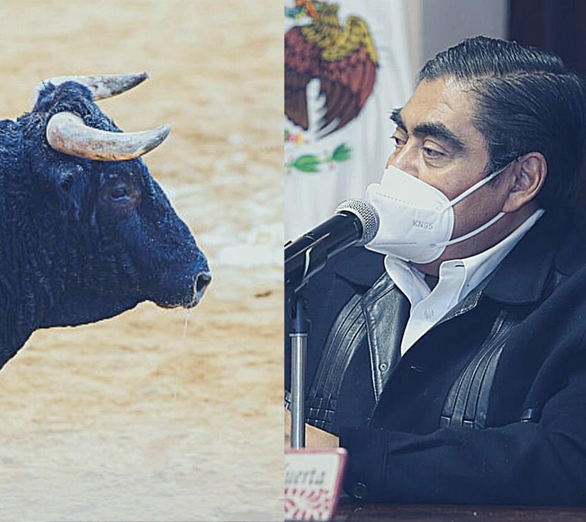 Se opone Barbosa a la prohibición de corridas de toros en Puebla