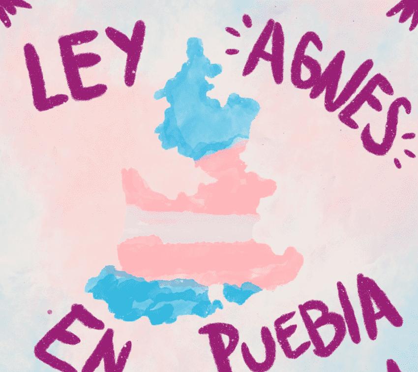 Avanza Ley Agnes; aprueban en comisiones el reconocimiento de la identidad de personas trans
