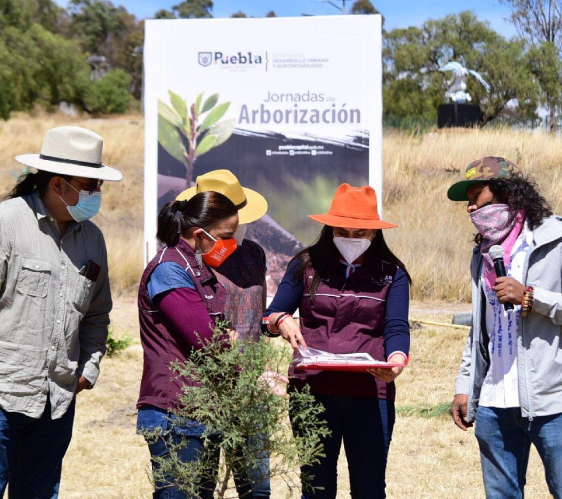 El proyecto consiste en la plantación de 10 mil ejemplares arbóreos durante 120 jornadas de reforestación, lo que representa una inversión de 1 millón 157 mil 593 pesos