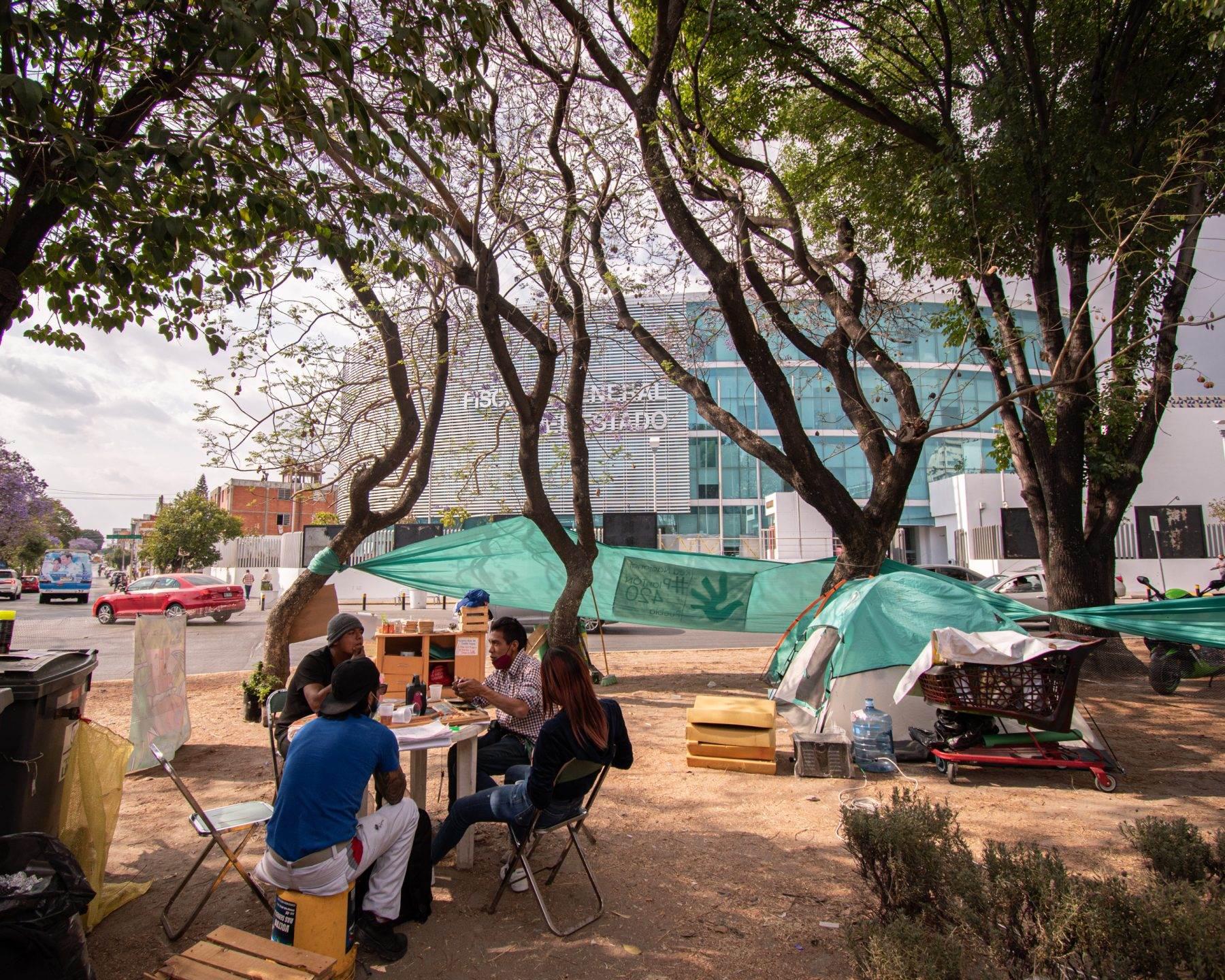 mariguana plantón cannábico Puebla fiscalía