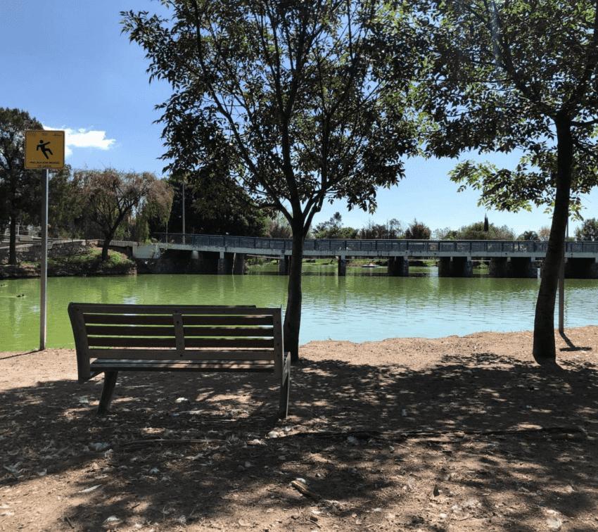 Los mejores parques para leer en Puebla, según nuestra audiencia