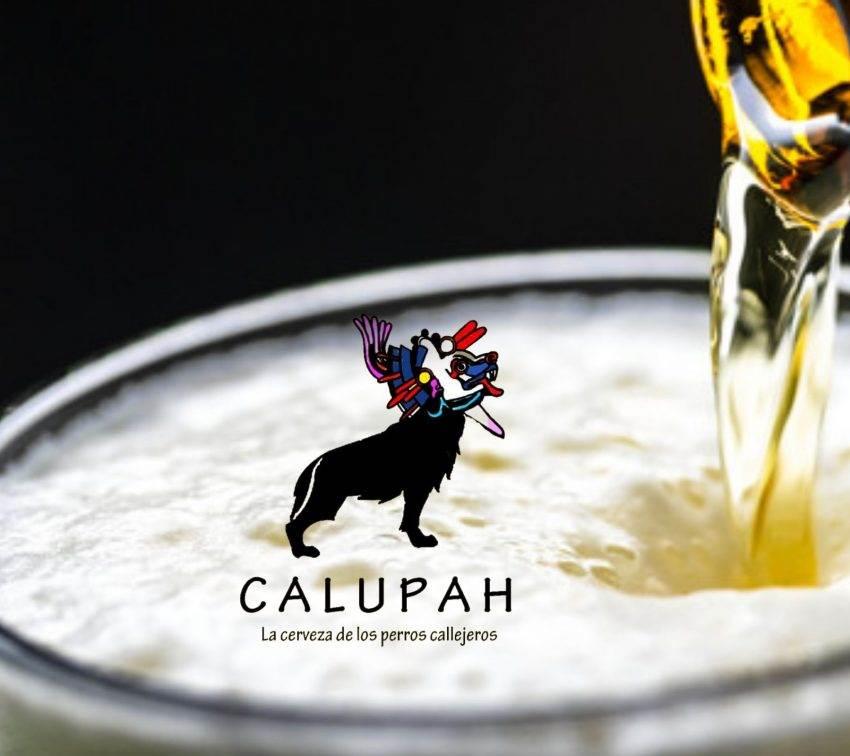 Calupah: La cerveza artesanal poblana que apoya a los perros callejeros
