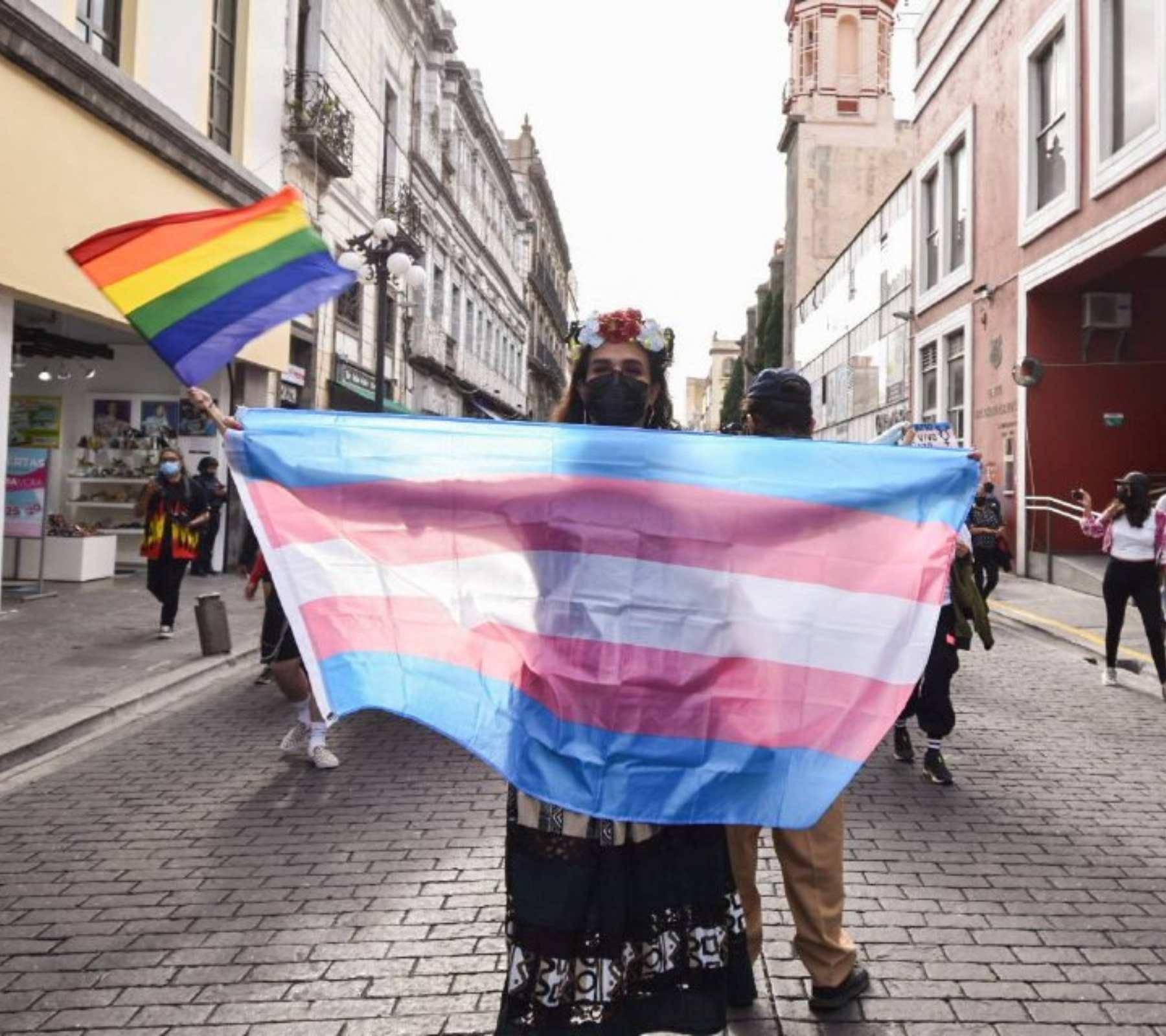 persona con bandera trans