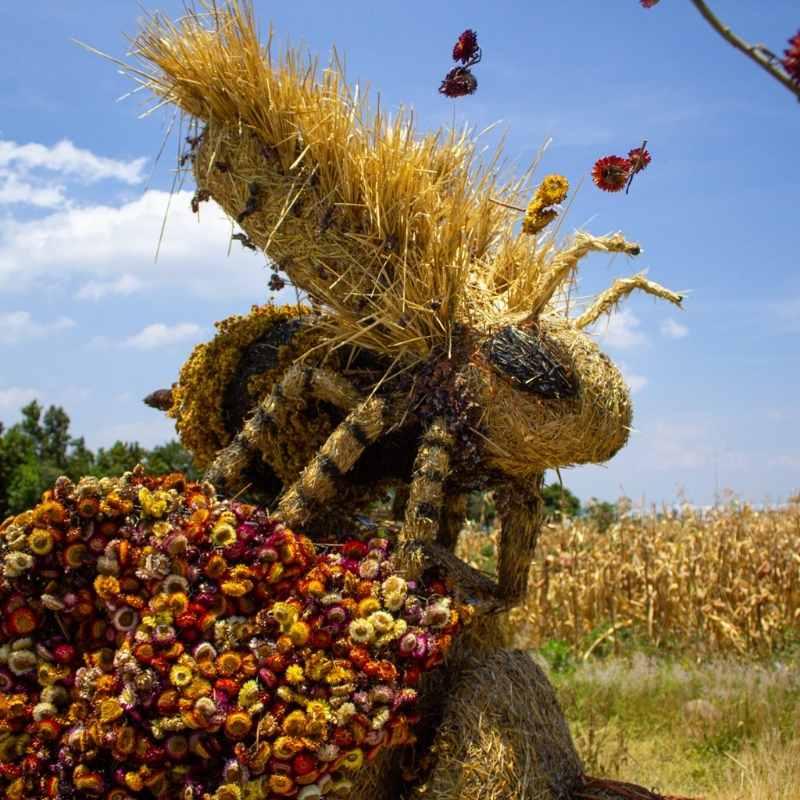 abeja de paja